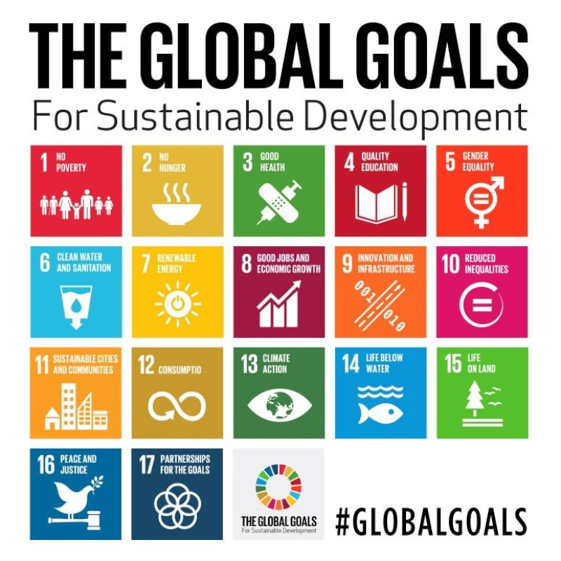 The sustainable development goals 17